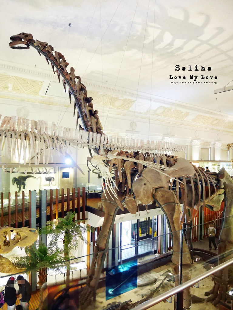 台北車站親子餐廳台灣博物館石尚恐龍主題餐廳恐龍咖啡館 (6)