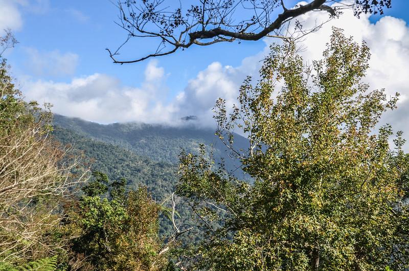 登見晴山途中景觀及展望 (7)