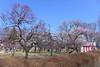 Photo:19n6450 By kimagurenote