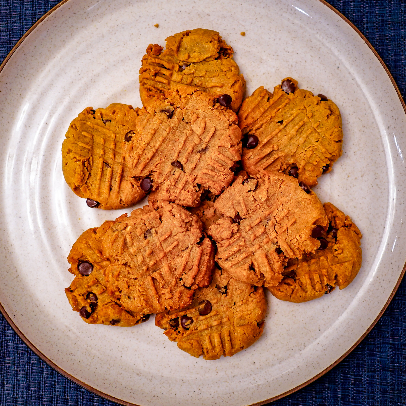 2018.12.30 Low Carbohydrate Cookies, Rehoboth Beach DE, USA 09394