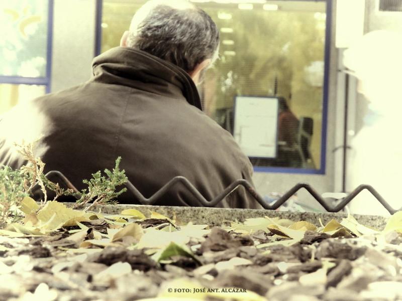 Hombre mayor sentado, de espaldas, con hojas secas, de otoño, en primer plano