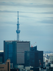 The Sky Tree, seen from the Tokyo Tower