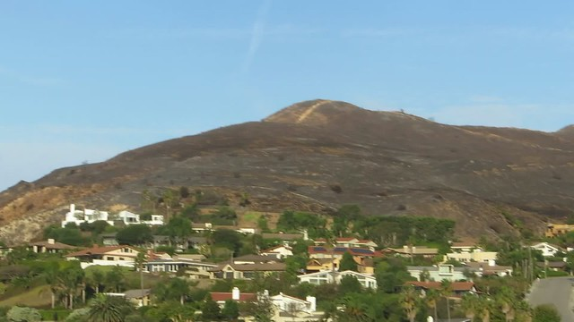 the Pepperdine fire scar
