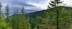West TIger 3 Trail panorama-2