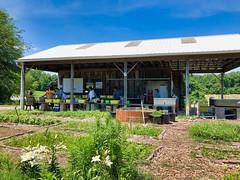 Clagett Farm CSA