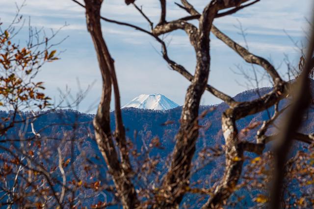 富士山の頭が見えます!