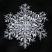 Snowflake-a-Day No. 1 by Don Komarechka