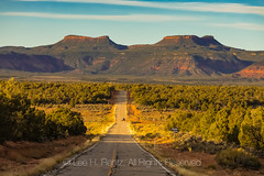 Bears Ears Viewed from Utah State Route 261
