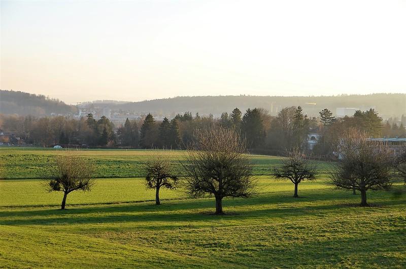 Feldbrunnen village 12.12 (12)
