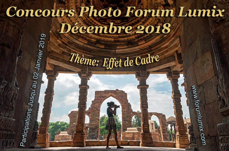 """Concours de décembre 2018 """"EFFET DE CADRE"""" 44376175850_0c45201e76_c"""