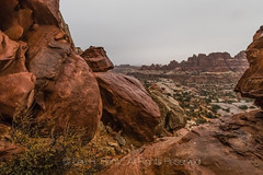 Rainy Day in the Needles District of Canyonlands National Park