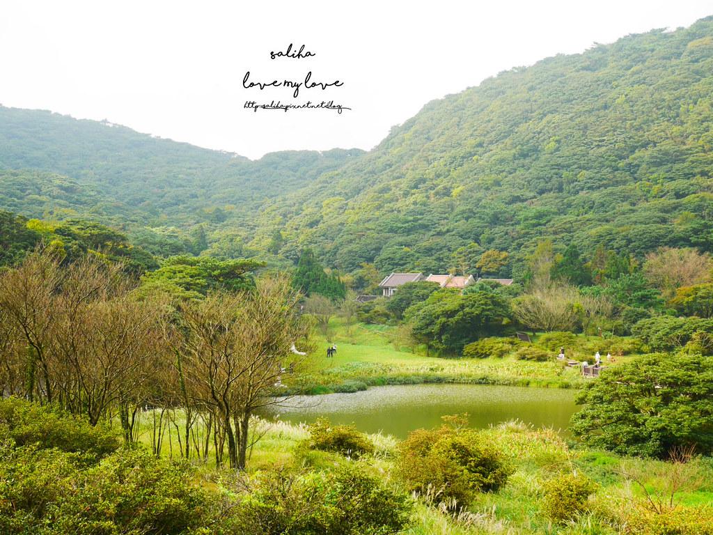 台北一日遊陽明山私房秘境推薦好玩好走親子景點大屯自然公園 (9)