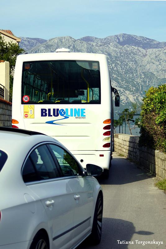 """Автобус """"Blue line"""" едет по заливу"""