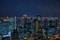 Osaka City Night