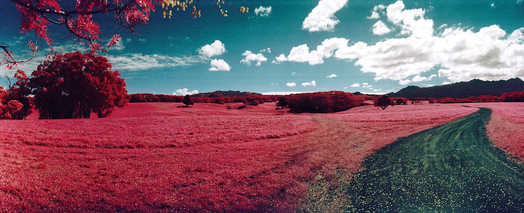 Infrared Hawaii