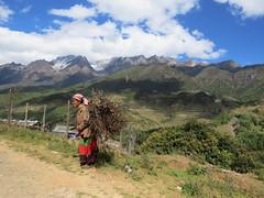 Yi lady, Lijiang