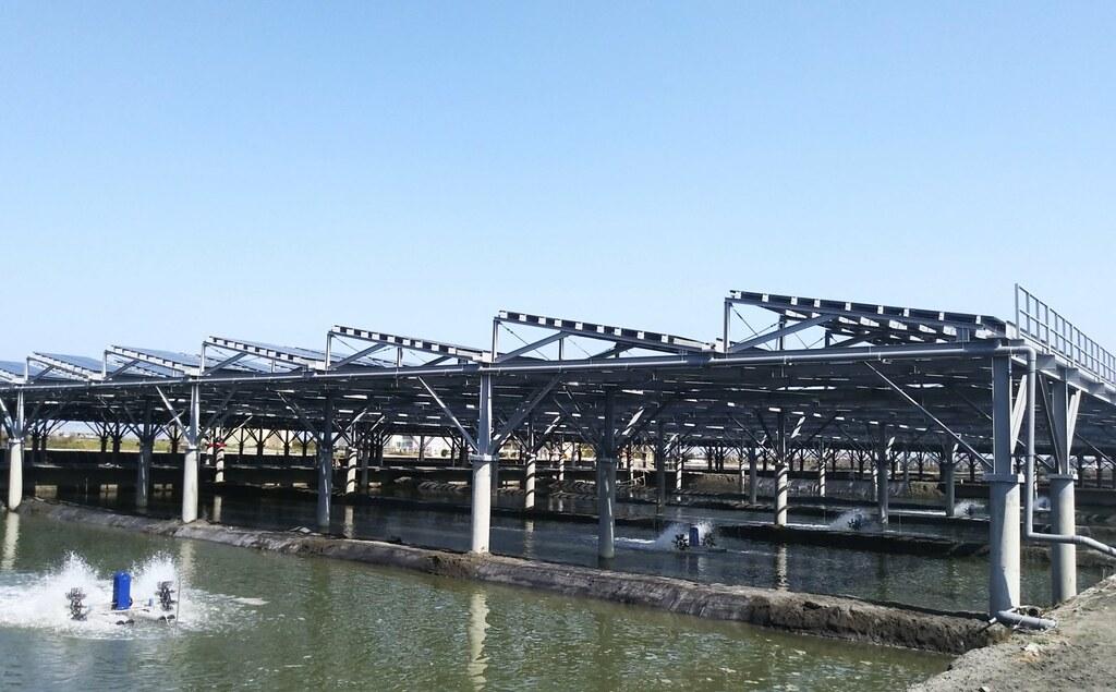 位於台西的文蛤池結合立柱式光電養殖。圖片來源:水試所。