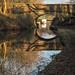 Clarke Lane bridge (29), Macclesfield Canal