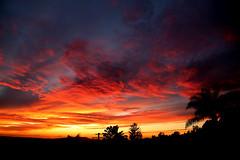 2018_12_14_sb-sunset_122