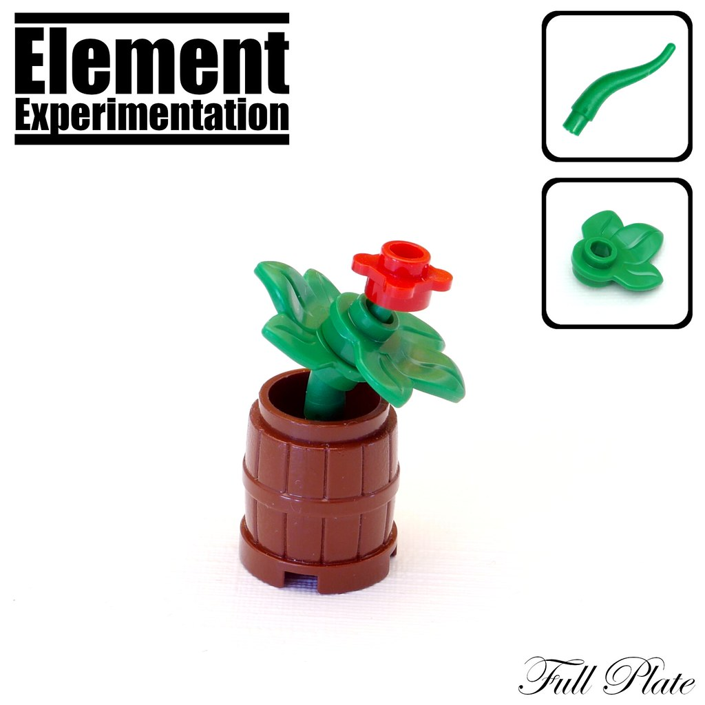 Element Experimentation: Flower in a Barrel