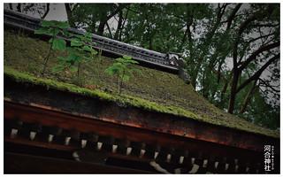河合神社-14