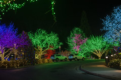 2018 National LDS Temple Holiday Lights  (69)