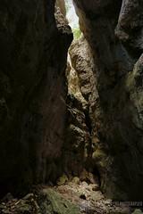 FOSSO DEL CRINO e MONTE FALDOBONO per la cresta est (Monte San Vicino)