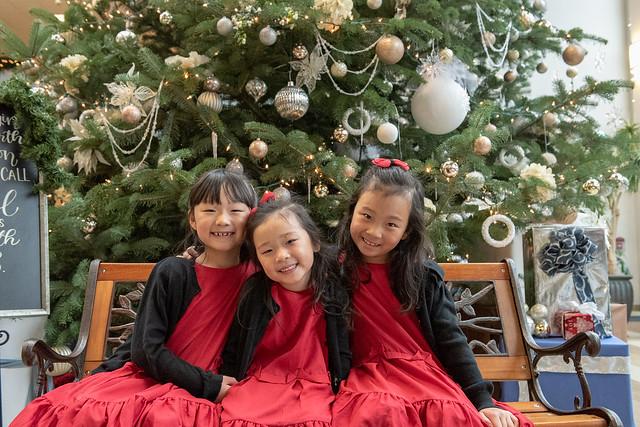 2018 크리스마스 트리 앞에서
