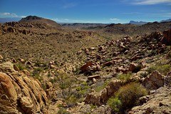 Rugged Landscape Across the Chihuahuan Desert (Big Bend National Park)