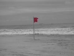 Long Beach 9-14 (11)
