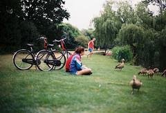 vondelpark Amsterdam, Netherland.