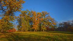 Couchez de soleil sur le parc des Rochettes à Montaigu (85600)