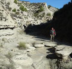 Megasismitas en dep�sitos lacustres - Rambla de los Pilares, Castill�jar (Granada, Espa�a) - 08