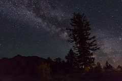 In the Oregon Night
