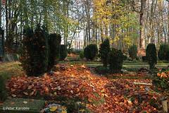 Friedhöfe / graveyards Schleswig-Holstein
