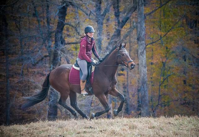 20181116 Austen's Ponies_11