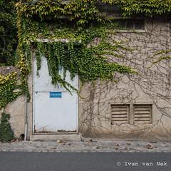 Défense d'afficher - Photo of Chavin