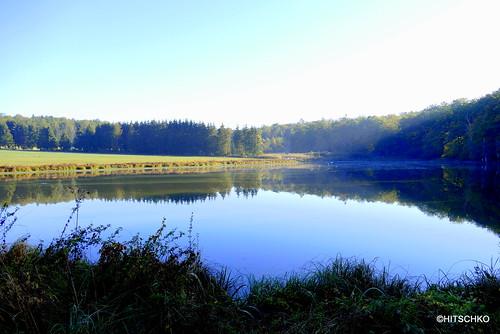 Teichlandschaft Etangs de Bonfol