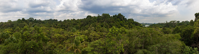 Jelutong Tower Panorama, Canon EOS 750D, Canon EF-S 18-135mm f/3.5-5.6 IS STM