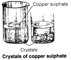 NCERT Solutions for Class 7 Science Chapter 6 Physical and Chemical Changes 1