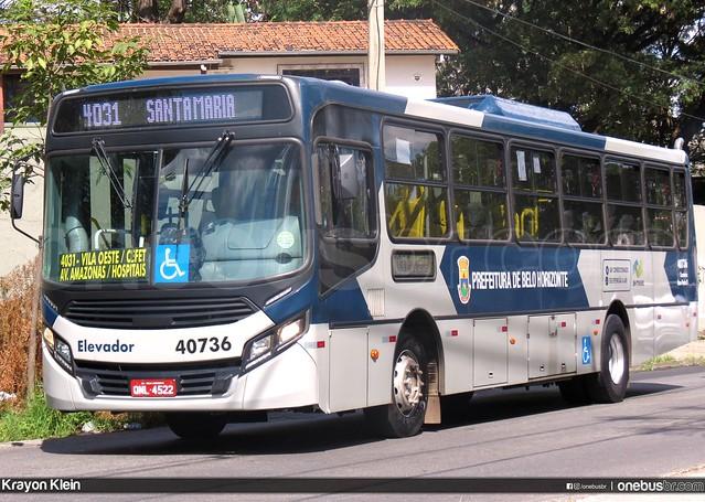 Salvadora - 40736