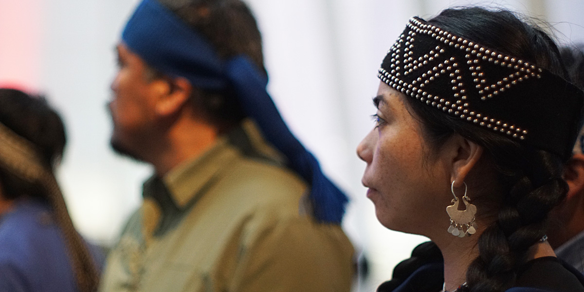 Delegación mapuche rinde honores al Libertador Simón Bolívar y al Comandante Hugo Chávez