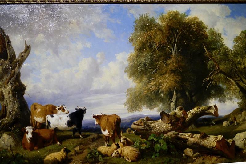 有牛群的風景