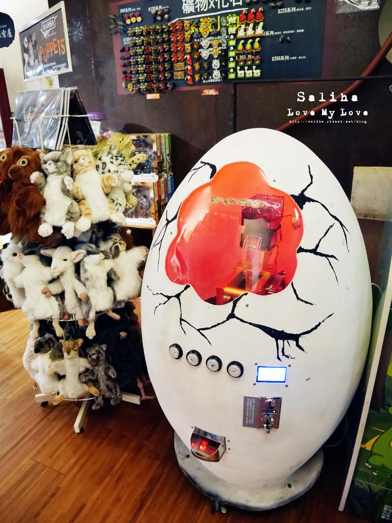 台北車站雨天親子景點台博館土銀展示館石尚探索自然館伴手禮紀念品益智玩具 (6)