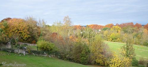 panorama dans les couleurs de l'automne