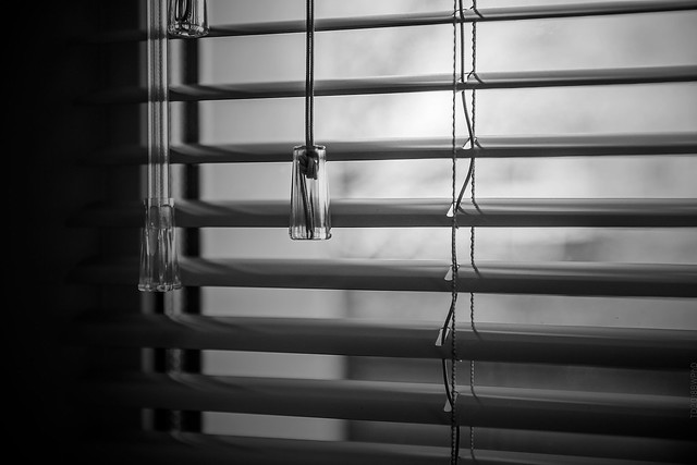 2018.11.16_320/365 - Sometimes I want to close the blinds and not see this world.