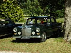 Mercedes 200D Richelieu (37 Indre et Loire) 02-09-18a - Photo of Ceaux-en-Loudun