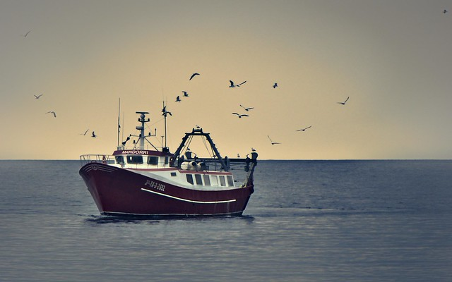 Fishing boat returning to harbour