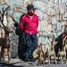 2018 - Mexico - Oaxaca - Reindeer sales