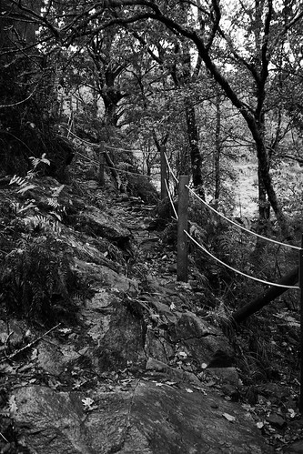 A rope on a path